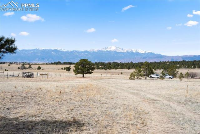 9065 Nature Refuge Way, Colorado Springs, CO 80908 (#7040109) :: Perfect Properties powered by HomeTrackR