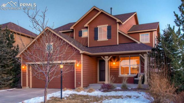 5043 Petrified Forest Trail, Colorado Springs, CO 80924 (#7042363) :: The Daniels Team