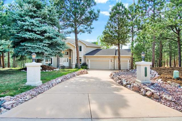 15580 Falcon Ridge Court, Colorado Springs, CO 80921 (#7043799) :: The Daniels Team