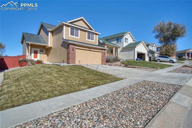 8297 Kettle Drum Street, Colorado Springs, CO 80922 (#7049163) :: The Daniels Team