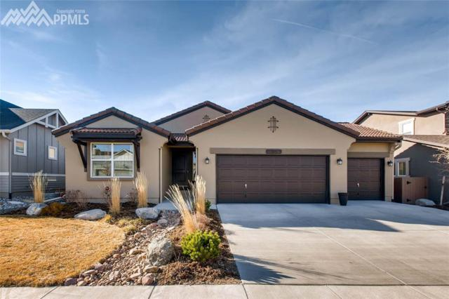 5195 Eldorado Canyon Court, Colorado Springs, CO 80924 (#7050103) :: Jason Daniels & Associates at RE/MAX Millennium