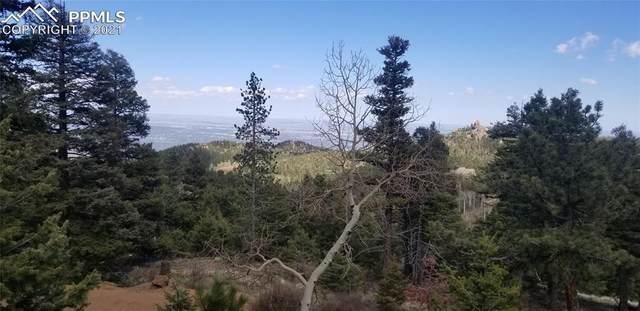 145 Spruce Road, Colorado Springs, CO 80829 (#7052868) :: The Treasure Davis Team | eXp Realty