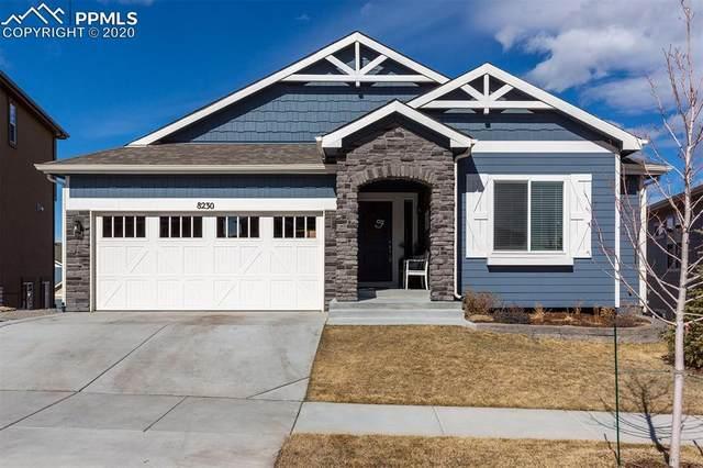8230 Misty Moon Drive, Colorado Springs, CO 80924 (#7053303) :: Finch & Gable Real Estate Co.