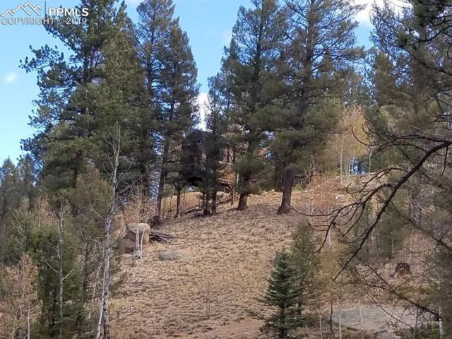 848 E Bison Creek Trail, Divide, CO 80814 (#7060281) :: 8z Real Estate