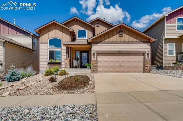 7936 Morning Dew Road, Colorado Springs, CO 80908 (#7062468) :: The Treasure Davis Team | eXp Realty
