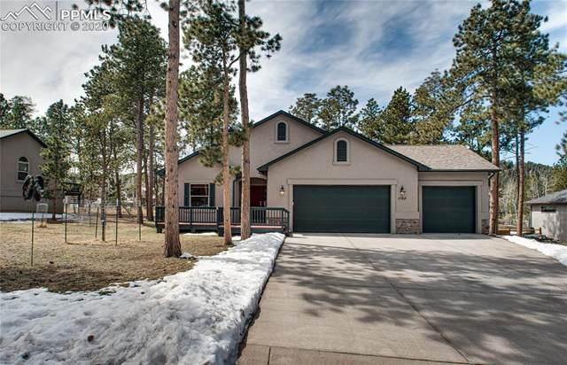 1182 Ptarmigan Drive, Woodland Park, CO 80863 (#7066313) :: Colorado Home Finder Realty