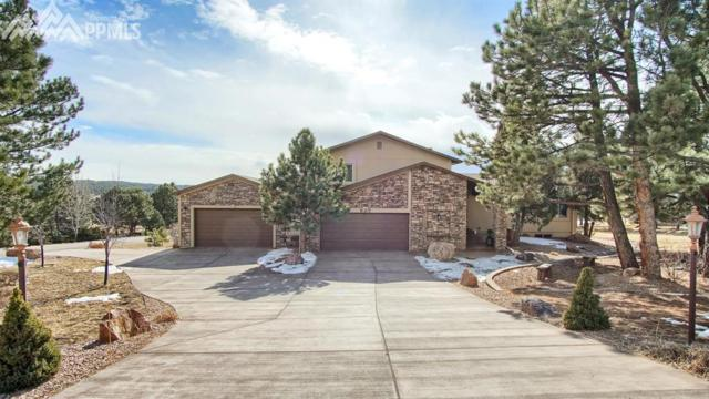 825 Oak Hills Drive, Monument, CO 80132 (#7066407) :: 8z Real Estate