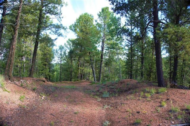 329 Paradiso Road, Divide, CO 80814 (#7074962) :: 8z Real Estate