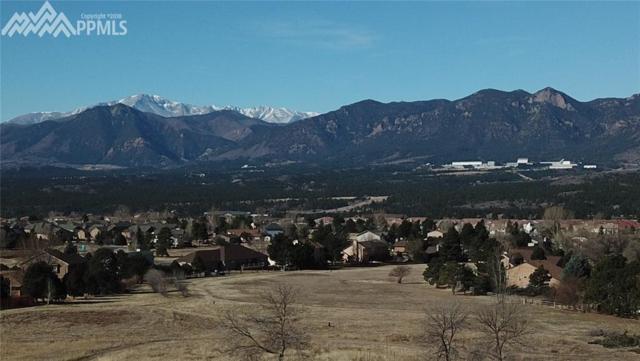311 Silver Rock Place, Colorado Springs, CO 80921 (#7079401) :: Fisk Team, RE/MAX Properties, Inc.