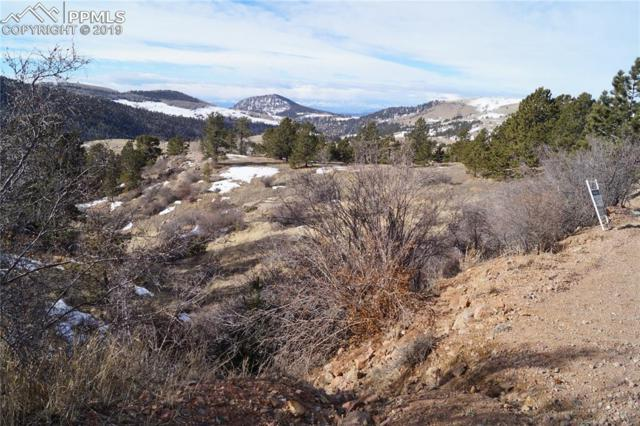 Spicer Avenue, Victor, CO 80860 (#7088625) :: The Daniels Team