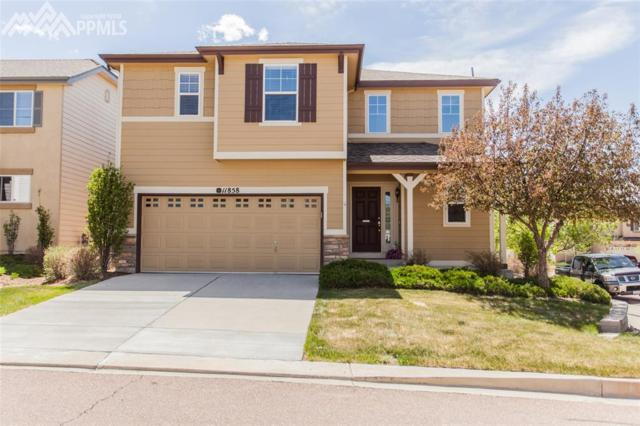 11858 Black Maple Lane, Colorado Springs, CO 80921 (#7091114) :: The Treasure Davis Team