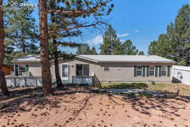 435 Banner Trail, Florissant, CO 80816 (#7091367) :: Colorado Home Finder Realty
