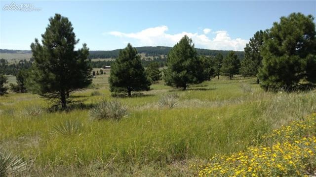 9896 Indian Trail, Peyton, CO 80831 (#7092133) :: 8z Real Estate