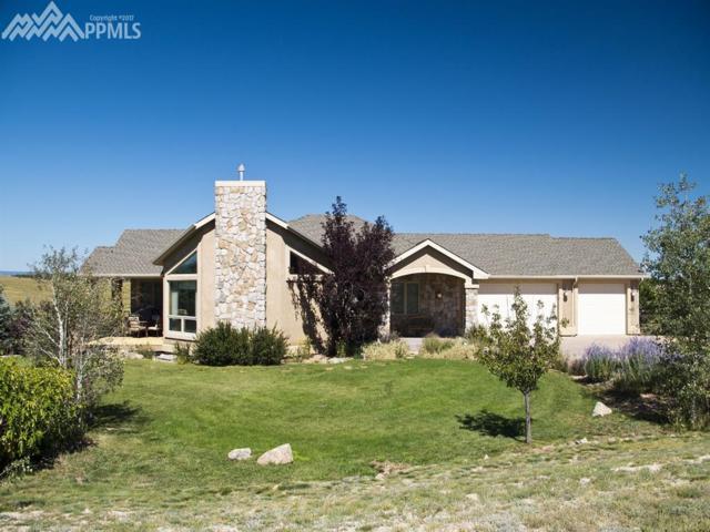 5320 Roundup Ridge Road, Colorado Springs, CO 80908 (#7092759) :: 8z Real Estate