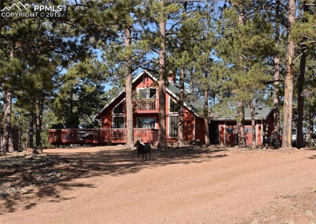 901 Empire Road, Florissant, CO 80816 (#7094471) :: Compass Colorado Realty