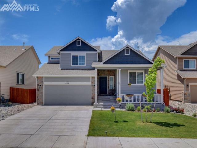 4514 Keagster Drive, Colorado Springs, CO 80911 (#7094623) :: Fisk Team, RE/MAX Properties, Inc.