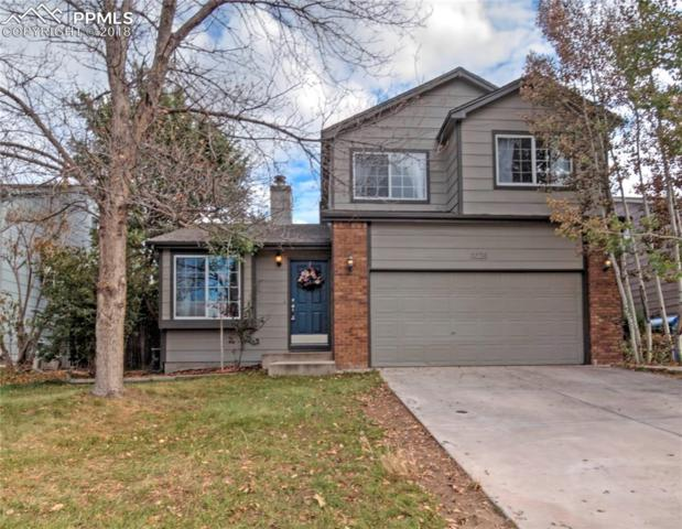 3025 Richmond Drive, Colorado Springs, CO 80922 (#7095220) :: The Treasure Davis Team