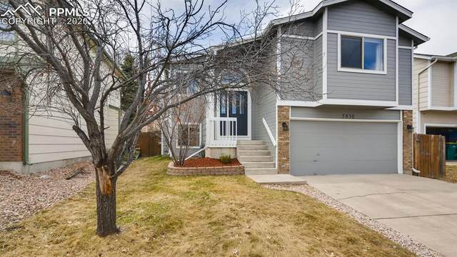 5830 Grapevine Drive, Colorado Springs, CO 80923 (#7095550) :: Finch & Gable Real Estate Co.
