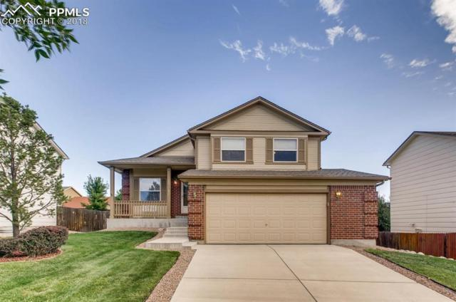 4338 Bays Water Drive, Colorado Springs, CO 80920 (#7097658) :: CC Signature Group