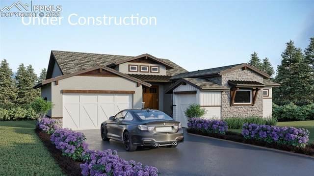 1007 Native Dancer Terrace, Colorado Springs, CO 80921 (#7102596) :: Finch & Gable Real Estate Co.