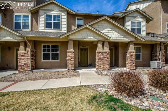 3069 Wild Peregrine View, Colorado Springs, CO 80916 (#7104132) :: CENTURY 21 Curbow Realty