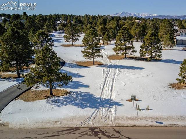 645 E Kings Deer Point, Monument, CO 80132 (#7107330) :: The Harling Team @ Homesmart Realty Group