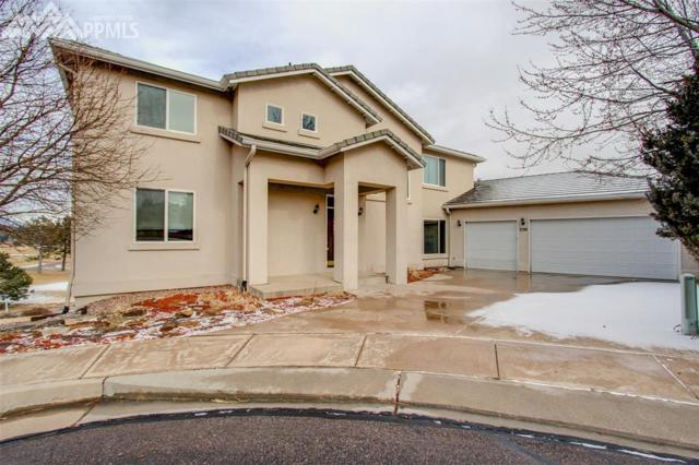 256 Pisano Heights, Colorado Springs, CO 80906 (#7110384) :: Action Team Realty
