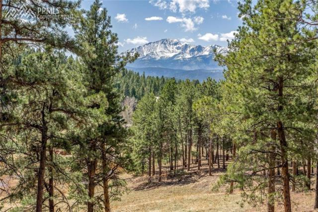 951 Spacious Skies Drive, Woodland Park, CO 80863 (#7113086) :: Jason Daniels & Associates at RE/MAX Millennium