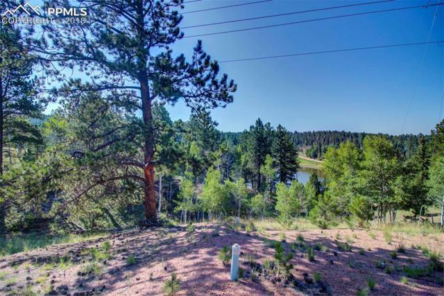 180 Garnet Way, Florissant, CO 80816 (#7115873) :: The Hunstiger Team