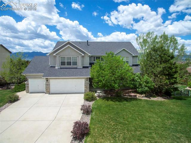 15190 Ridgefield Lane, Colorado Springs, CO 80921 (#7116799) :: The Daniels Team