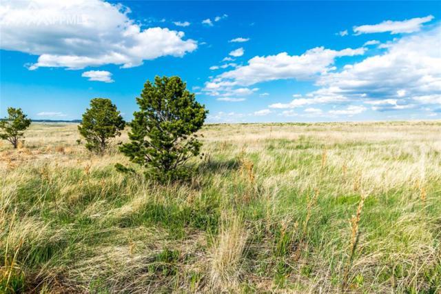 12015 Silver Concho Trail, Elbert, CO 80106 (#7117955) :: 8z Real Estate