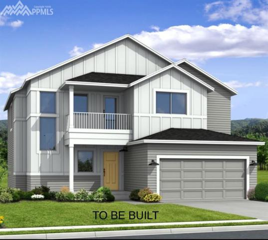 8149 Gilpin Peak Drive, Colorado Springs, CO 80924 (#7120439) :: 8z Real Estate