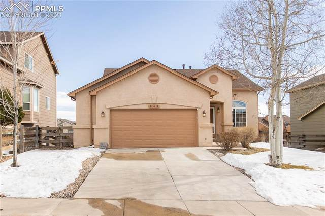 542 Oxbow Drive, Monument, CO 80132 (#7120570) :: The Gold Medal Team with RE/MAX Properties, Inc