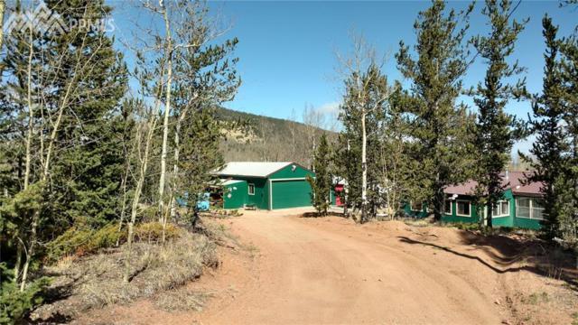 10318 S Highway 67, Cripple Creek, CO 80813 (#7123592) :: 8z Real Estate