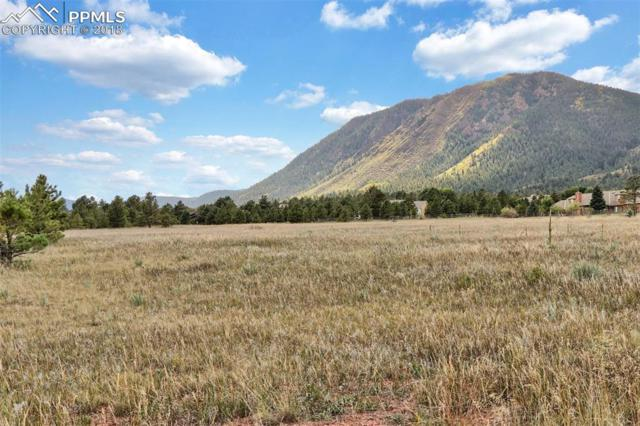 Lot 8 Forest View Road, Monument, CO 80132 (#7125378) :: Action Team Realty