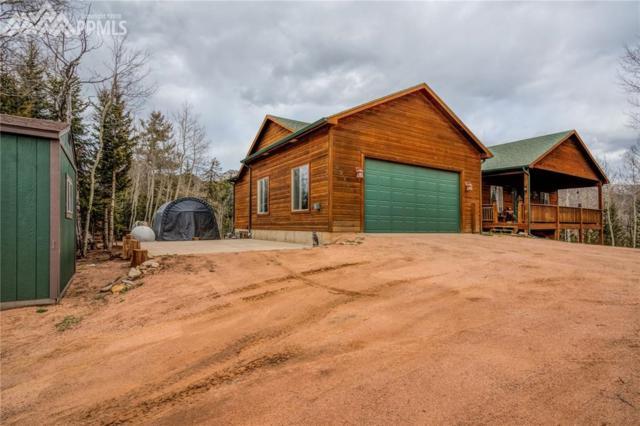 2976 County 61 Road, Cripple Creek, CO 80813 (#7131489) :: The Peak Properties Group