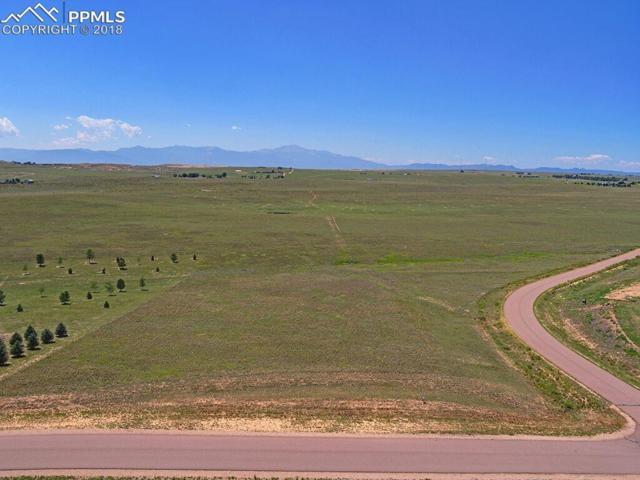 1820 Terri Lee Drive, Peyton, CO 80831 (#7133931) :: Action Team Realty