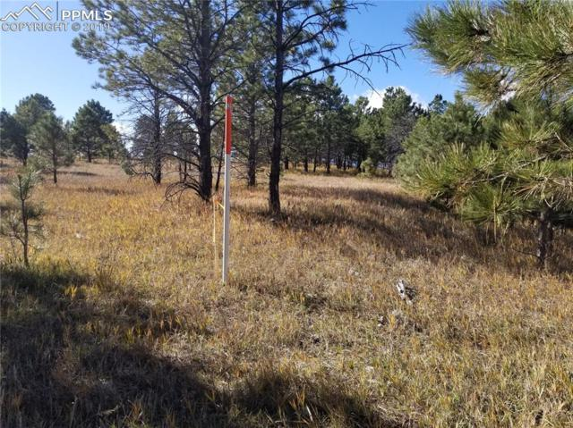 Lot 30 Unknown Road, Colorado Springs, CO 80908 (#7134222) :: The Daniels Team