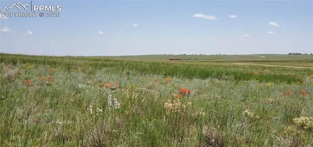 7589 Buckskin Ranch View, Peyton, CO 80831 (#7134547) :: 8z Real Estate