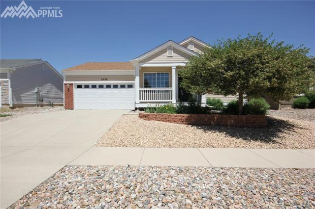 6496 Cache Drive, Colorado Springs, CO 80923 (#7135979) :: 8z Real Estate