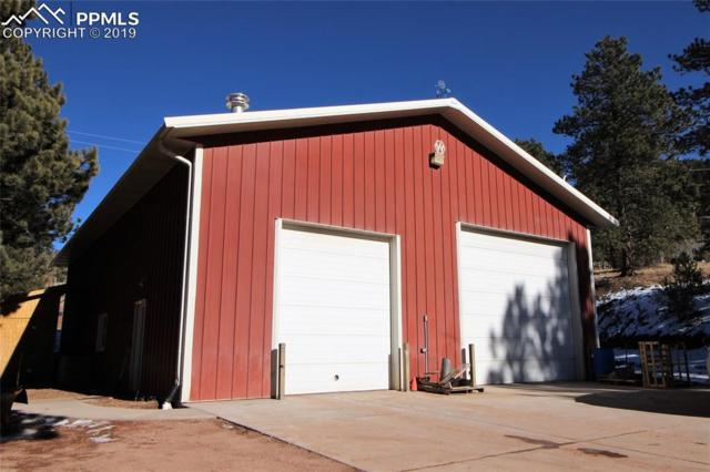 5697 Trout Creek Road, Woodland Park, CO 80863 (#7137081) :: 8z Real Estate