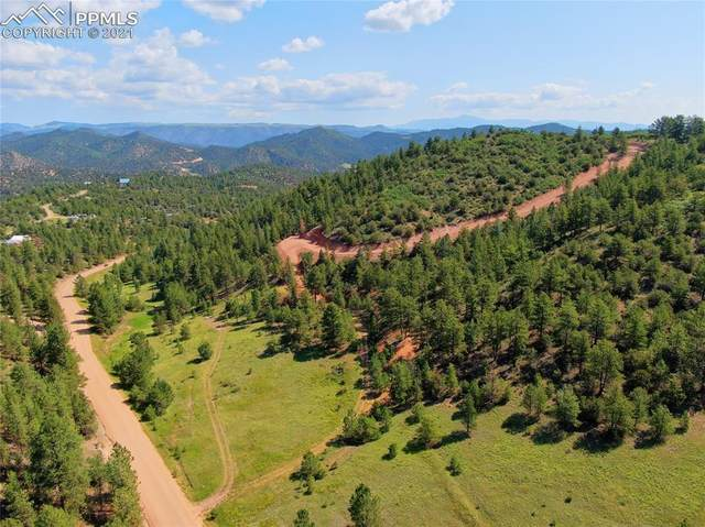 1758 Buttonwood Road, Canon City, CO 81212 (#7139878) :: Action Team Realty