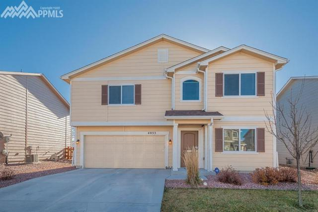 4033 Silver Star Grove, Colorado Springs, CO 80911 (#7144560) :: The Peak Properties Group