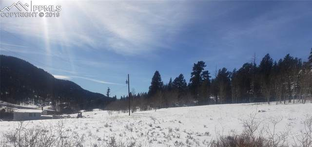 60 and 72 Cherokee Path, Lake George, CO 80827 (#7146272) :: HomePopper