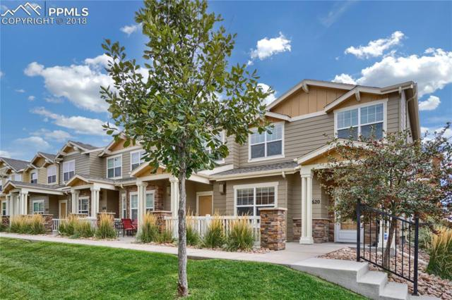 5620 Saint Patrick View, Colorado Springs, CO 80923 (#7146620) :: The Treasure Davis Team