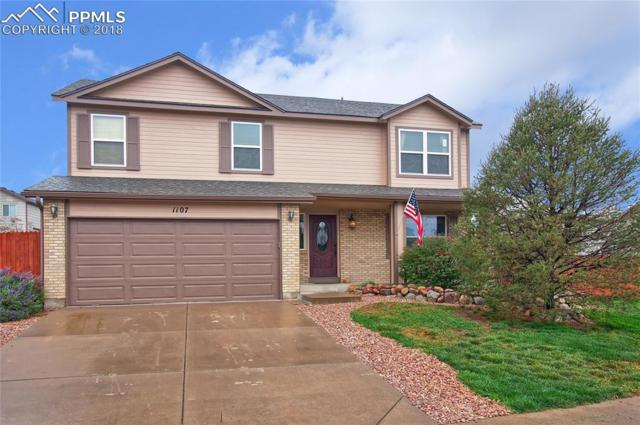 1107 White Stone Way, Fountain, CO 80817 (#7148466) :: Jason Daniels & Associates at RE/MAX Millennium