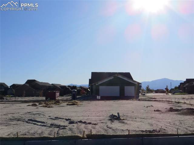 9534 Dewitt Drive, Colorado Springs, CO 80924 (#7152106) :: Action Team Realty