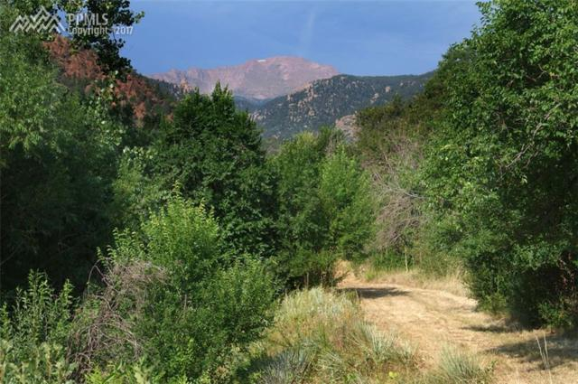 Fountain Place, Manitou Springs, CO 80829 (#7157442) :: 8z Real Estate