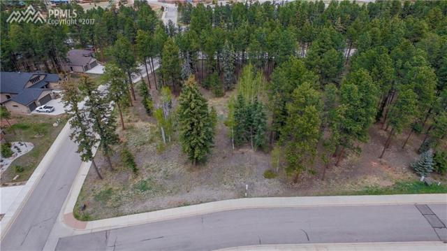 600 Meadowlark Lane, Woodland Park, CO 80863 (#7157847) :: Jason Daniels & Associates at RE/MAX Millennium