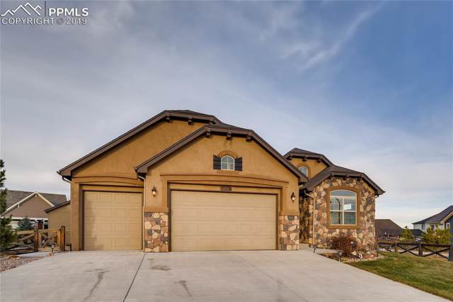 7178 Jagged Tree Circle, Colorado Springs, CO 80927 (#7160981) :: 8z Real Estate